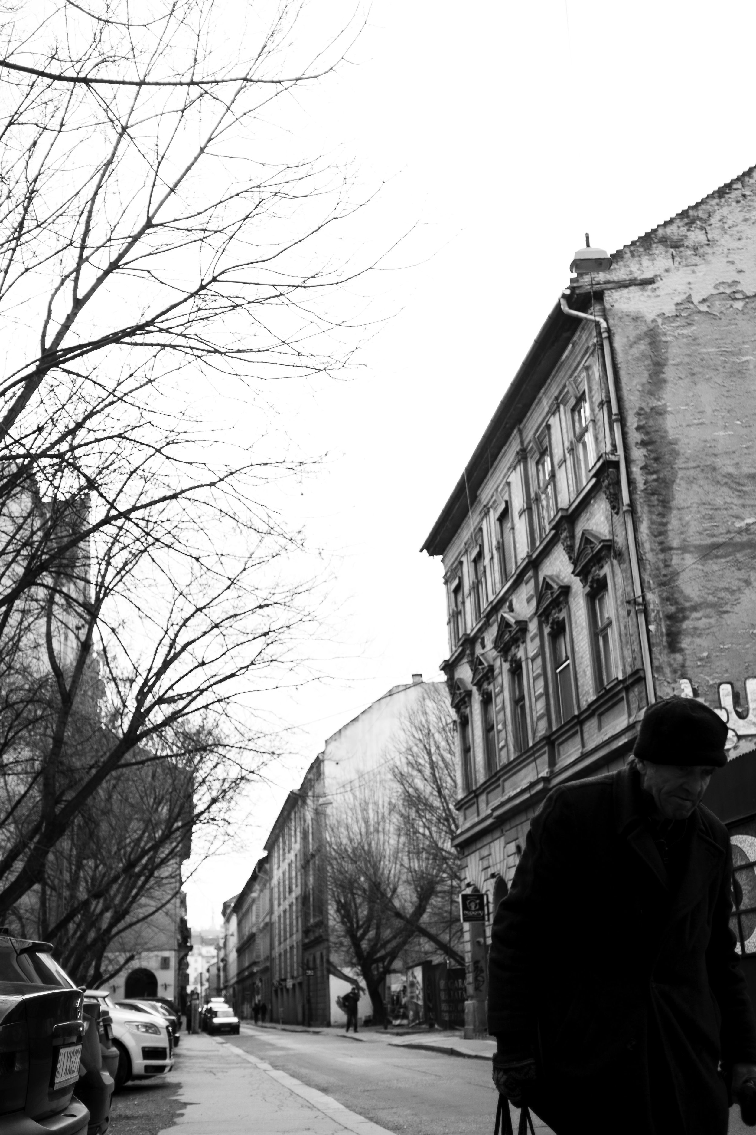 Walking Man.jpg