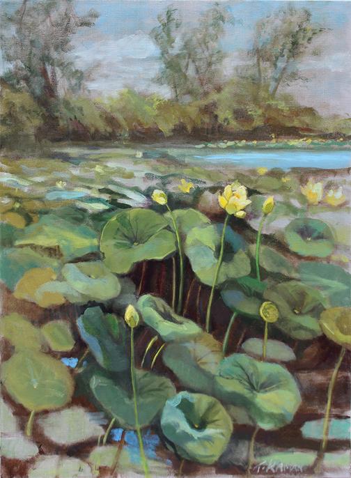 Tricia Kaman Sacred Lotus 2.jpg