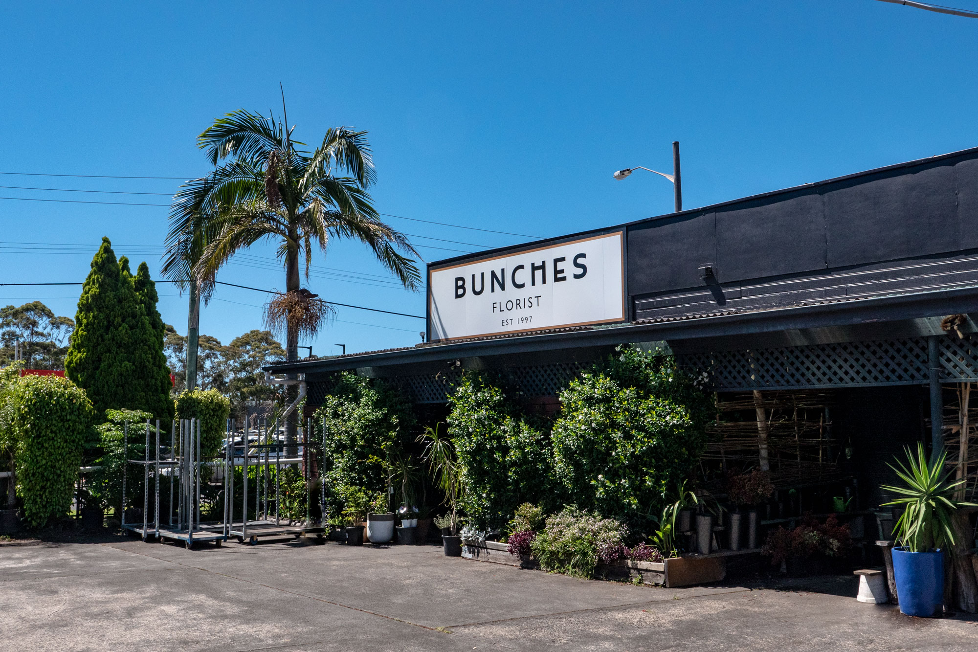 Bunch Florist - Business Sign