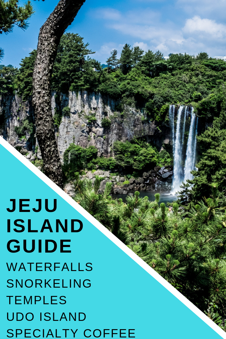 Best Jeju Island guide. Including best waterfalls to see, how to get around Jeju Island, awesome snorkeling spots, specialty coffee & more!