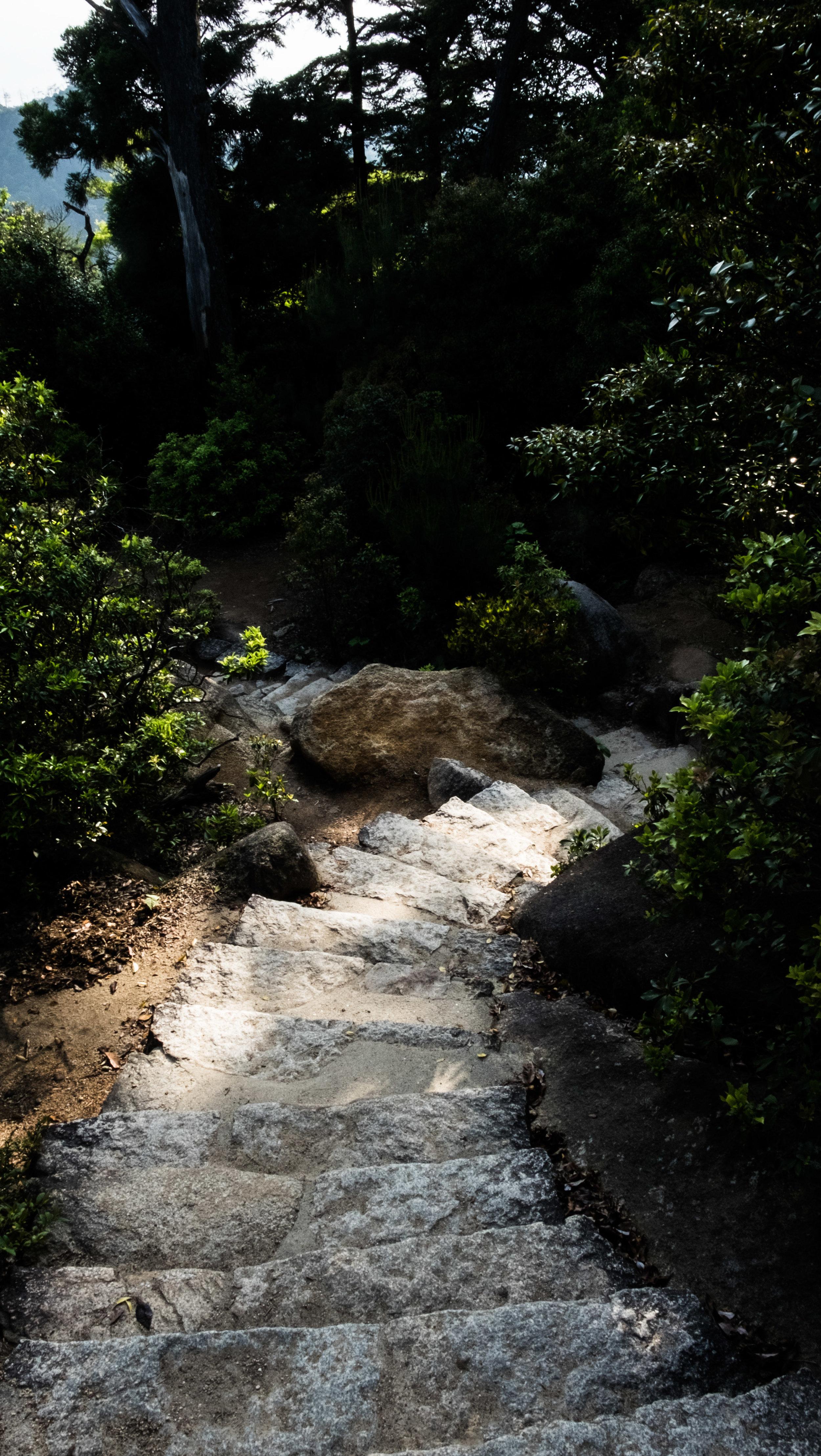 stairsmiyajima.jpg