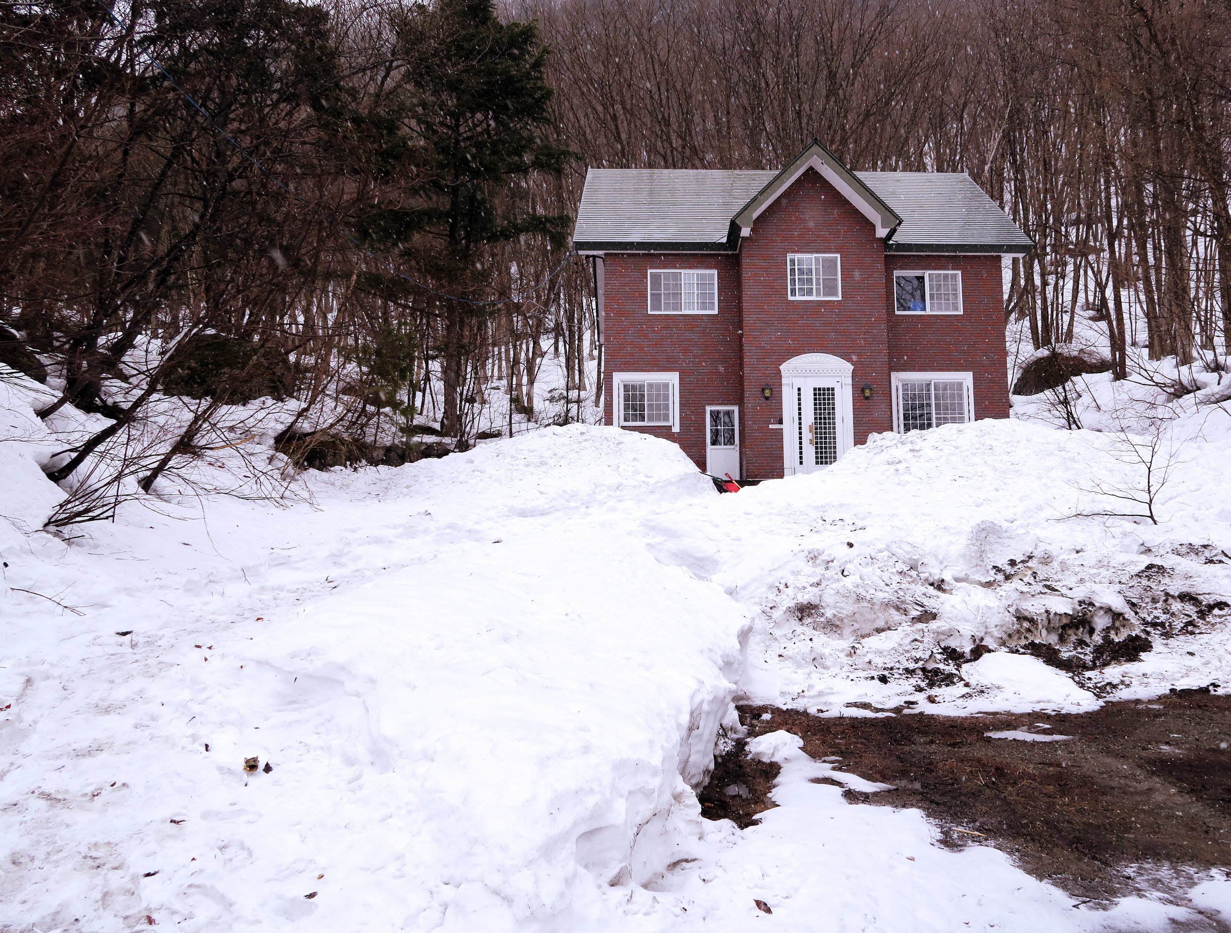Where to stay this snow season in Hakuba, Japan. - A backpackers experience at The Bohemians Shelter.