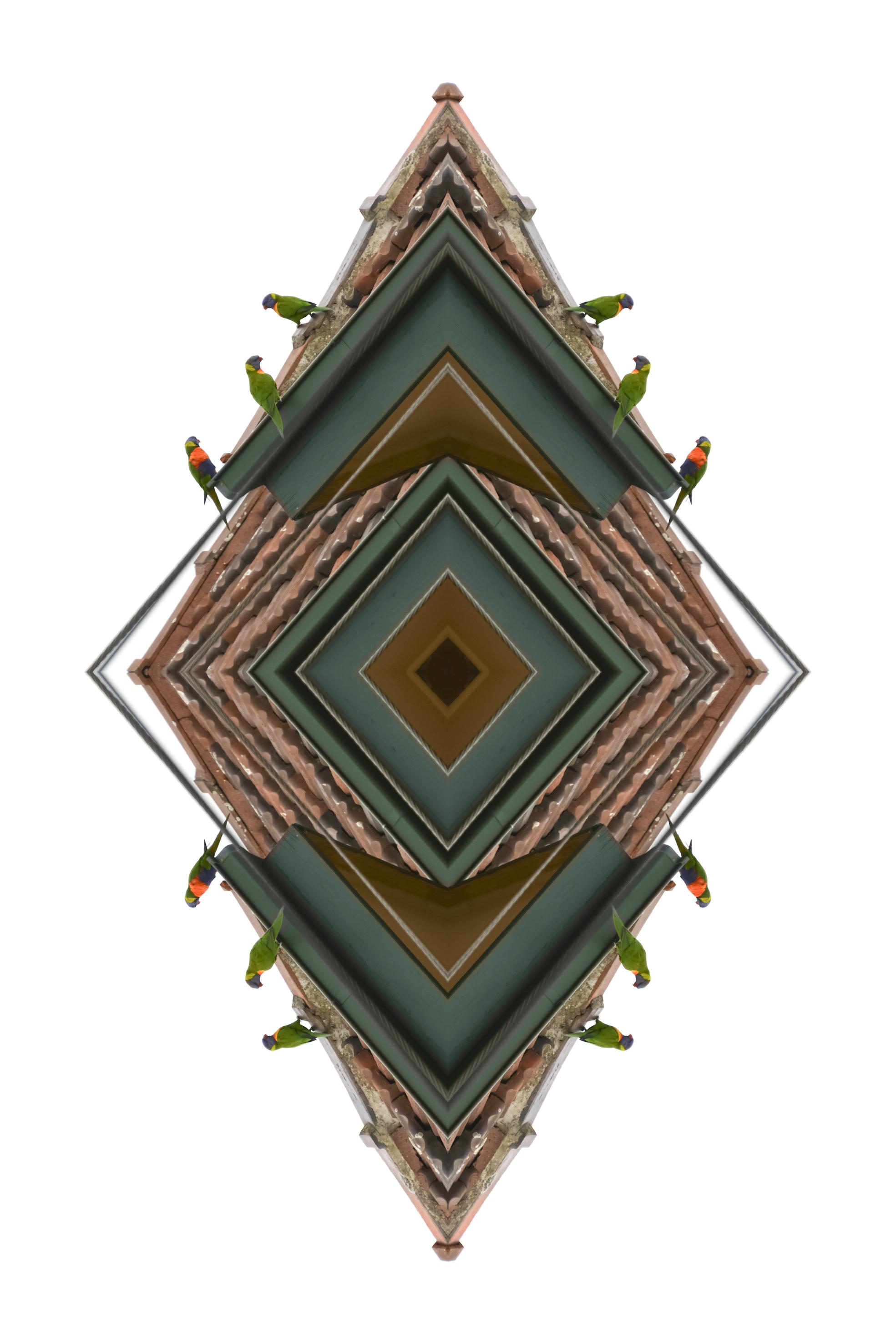 Rainbow Lorikeet,  2017  Archival print on cotton rag paper  125 x 85 cm
