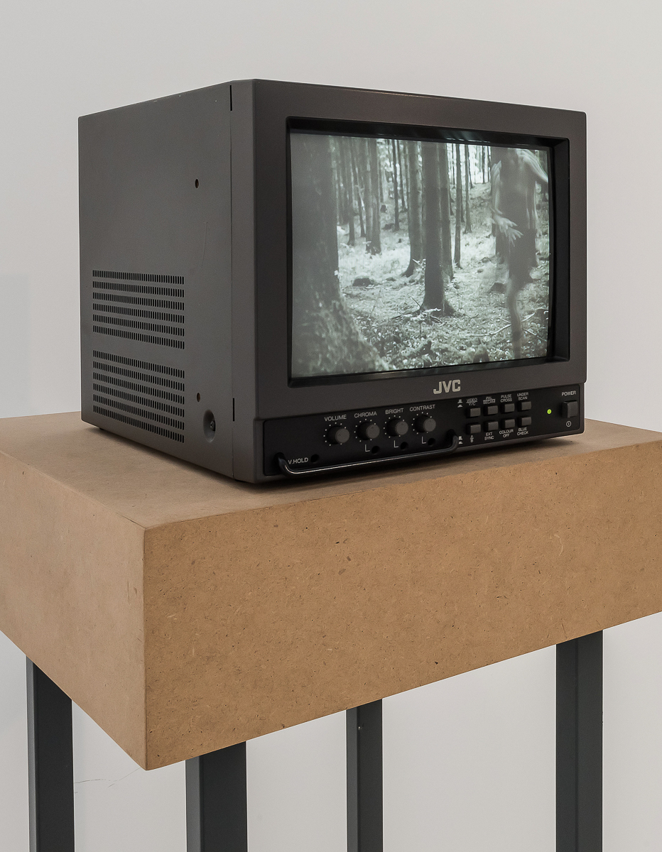 Im Walde: video sculpture 2014