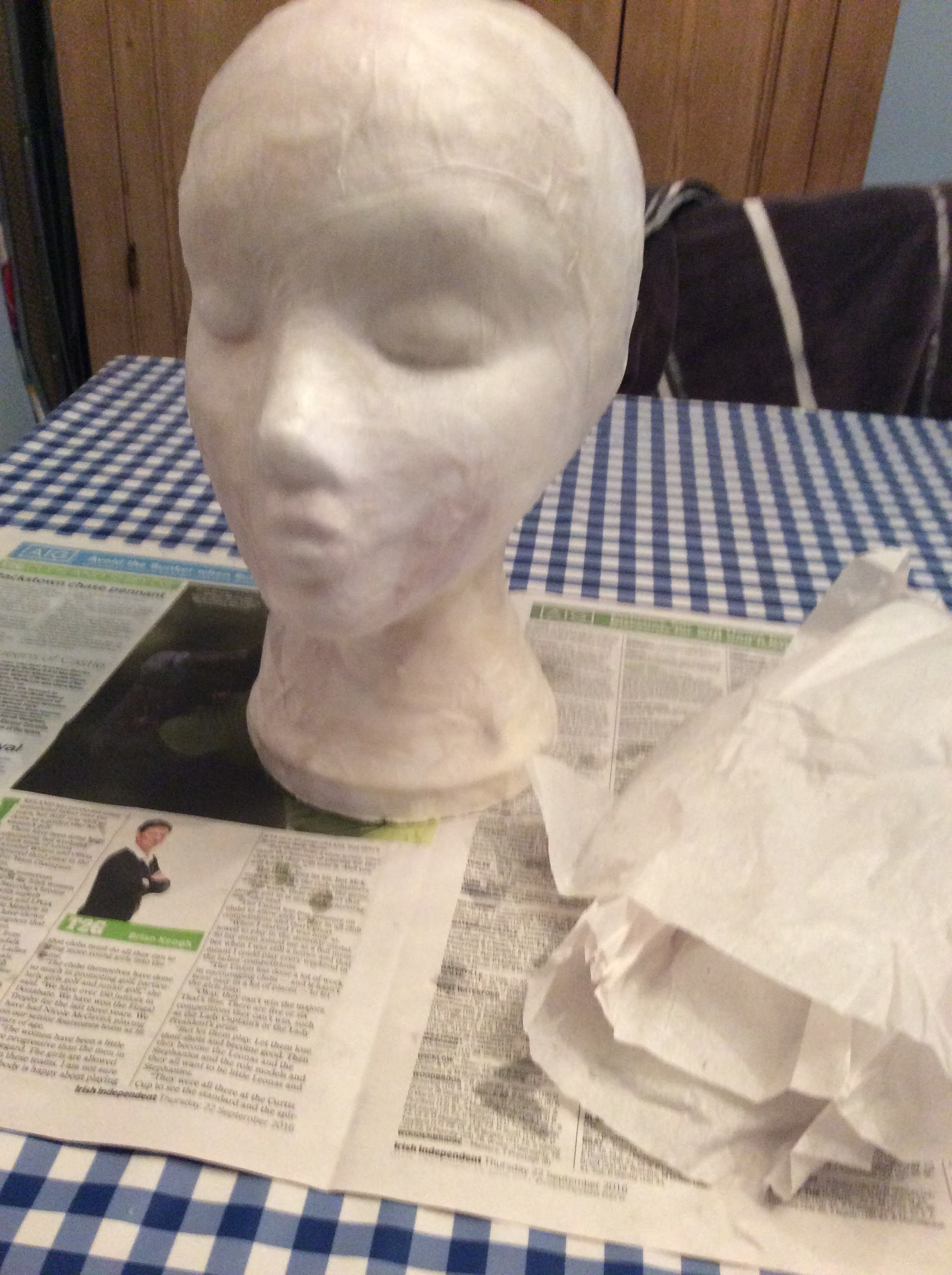 STEP TWO.......Fine tissue paper was applied