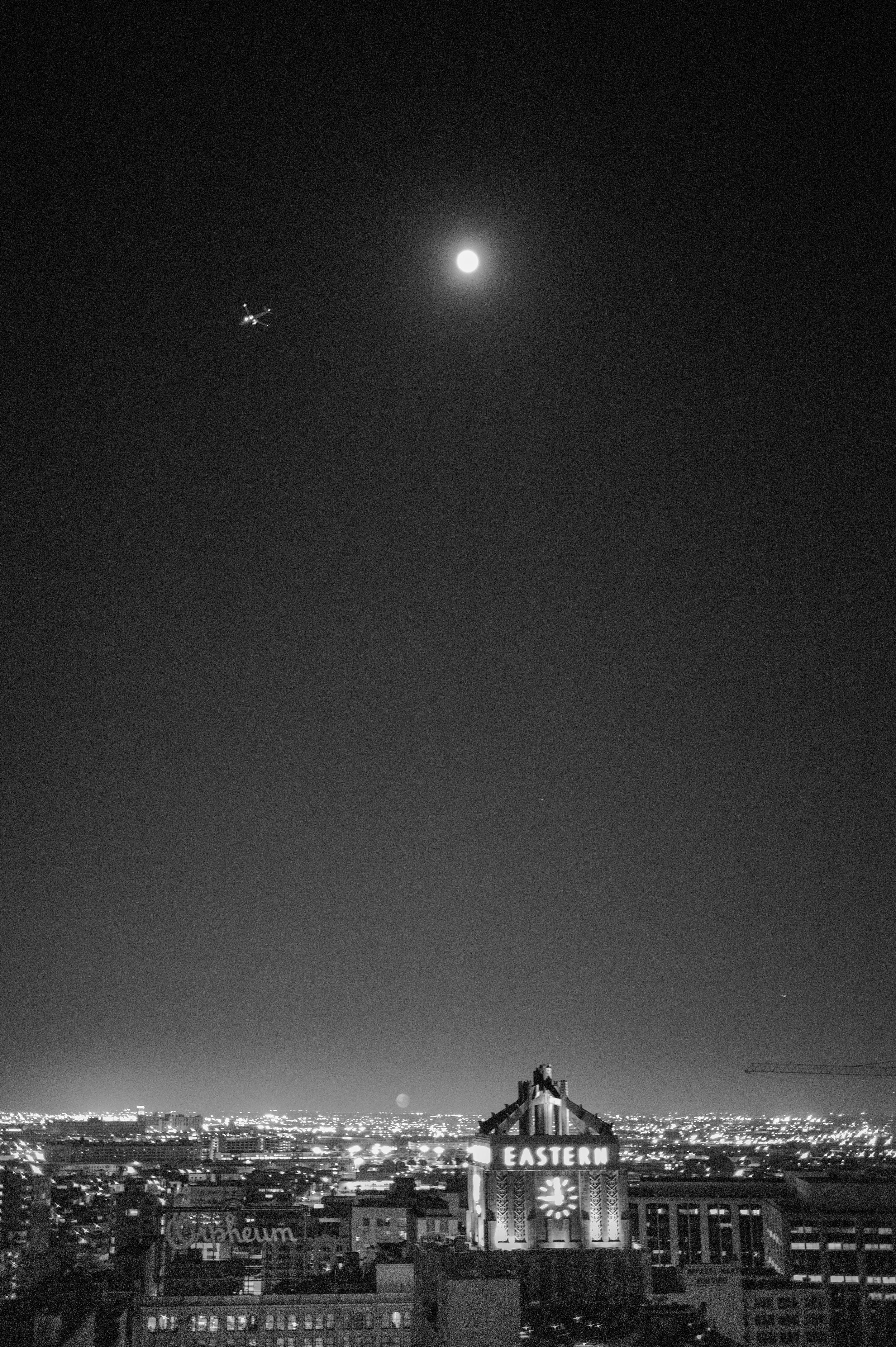 Eastern Moon