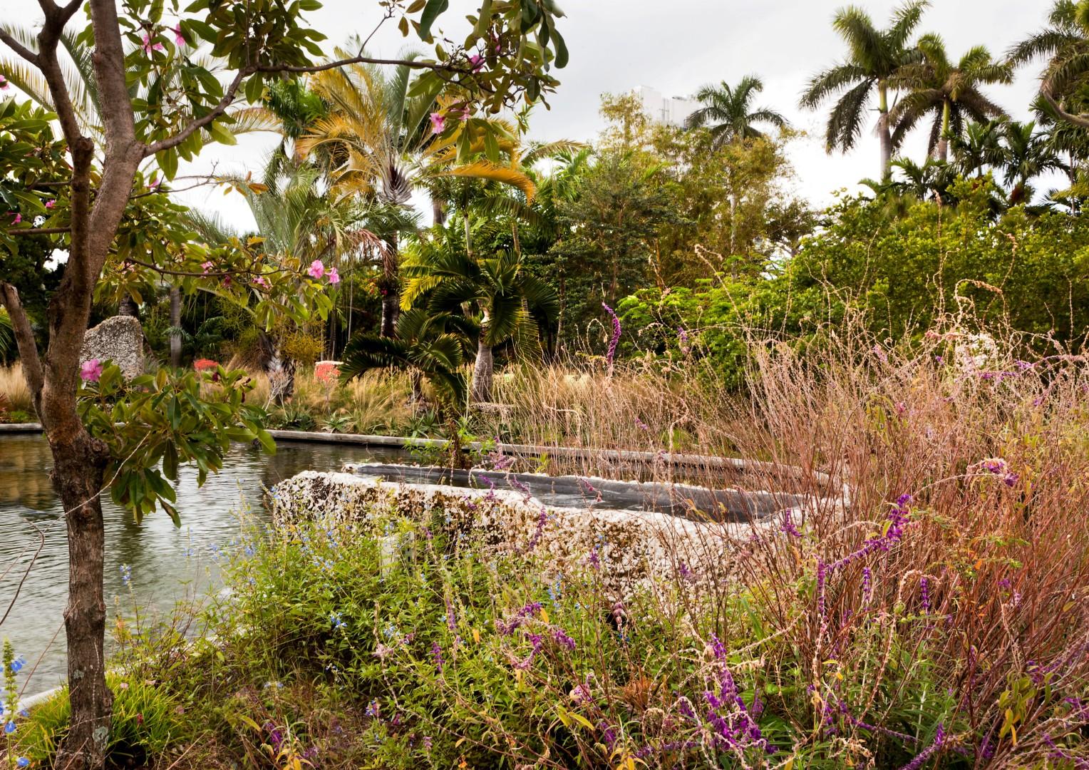 Miami Beach Botanical Garden Stephen Dunn