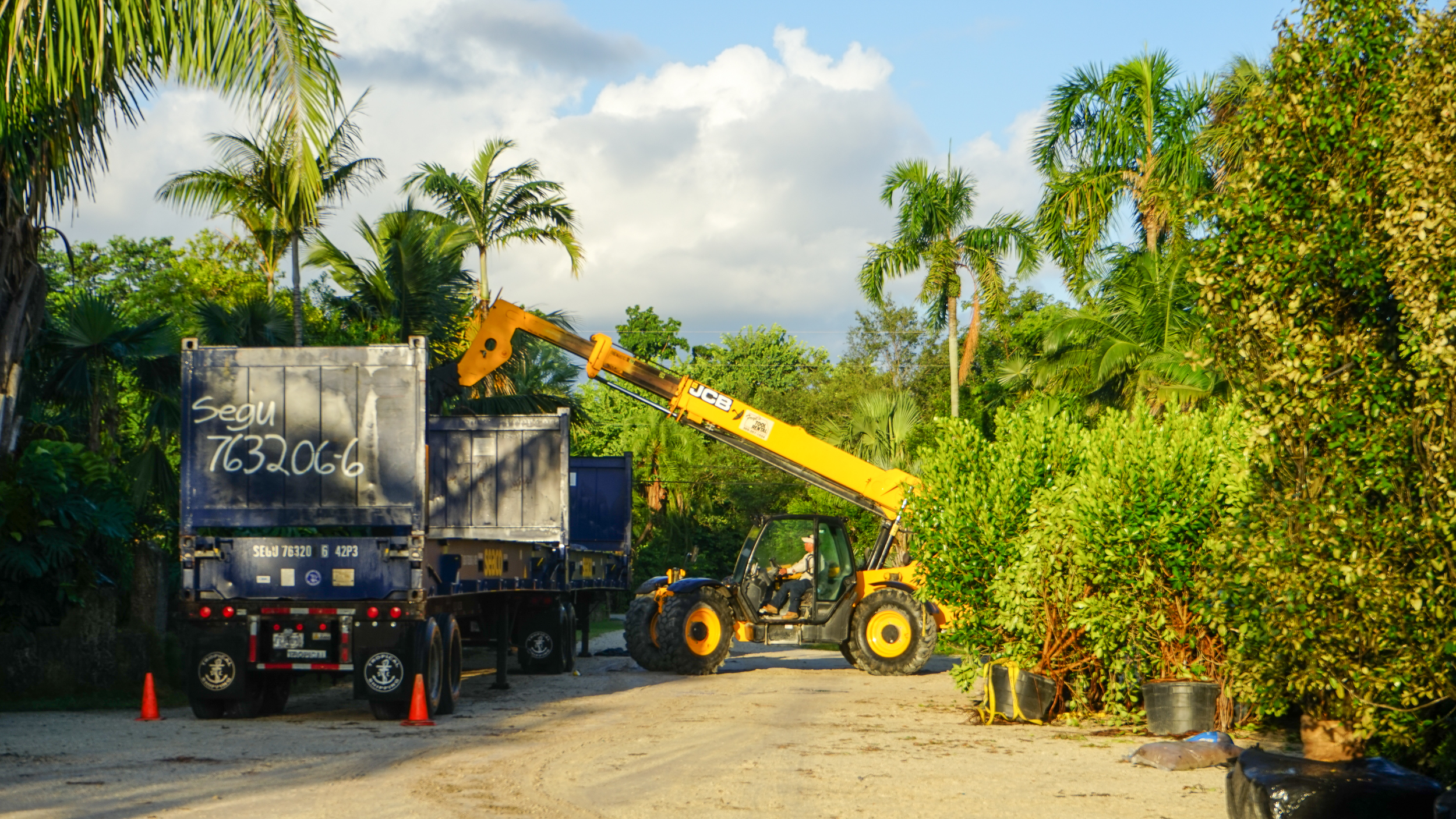 Export Shipping Services Plant Creations
