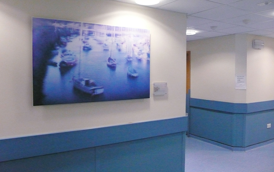 Marina, 2012, Installed in Scarborough Hospital Emergency Department