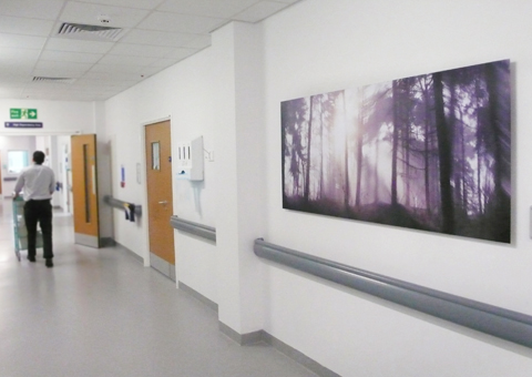 artwork-for-hospitals-the-lickeys