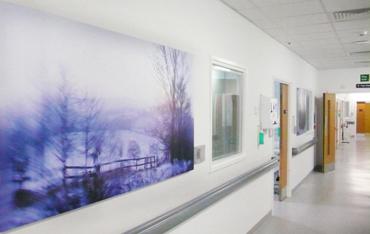 artwork-for-healthcare-buildings-clent-hills-sunrise