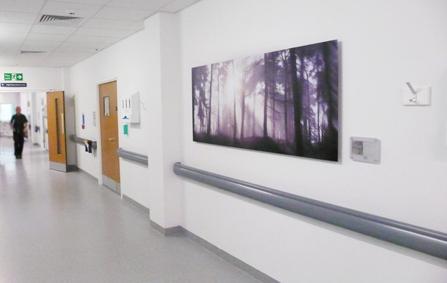 healthcare-art-the-lickeys