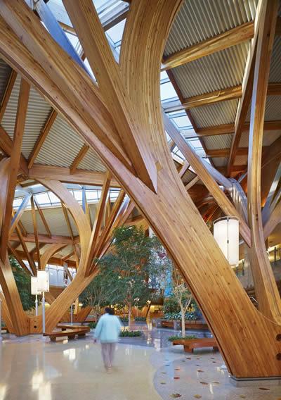 salutogenic-design_farrow_architects
