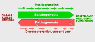 salutogenic theory