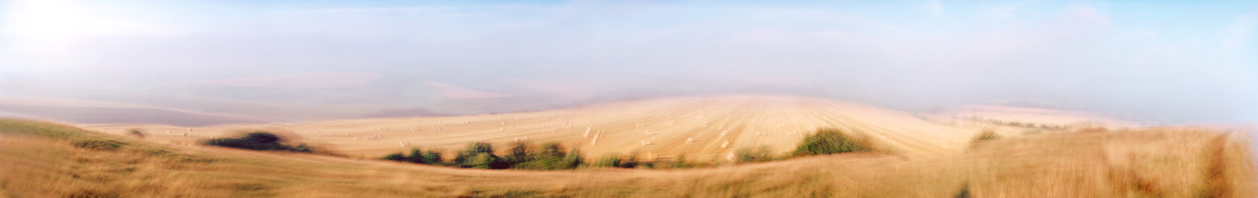 Wiltshire Fields, 2004