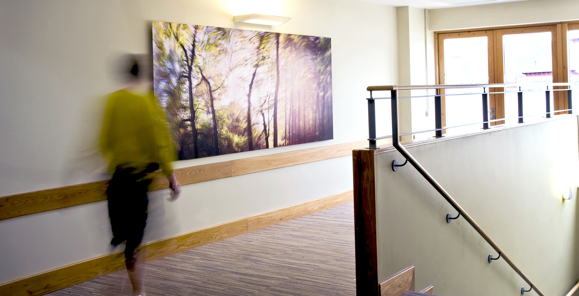 Commissioned artwork for healthcare interiors