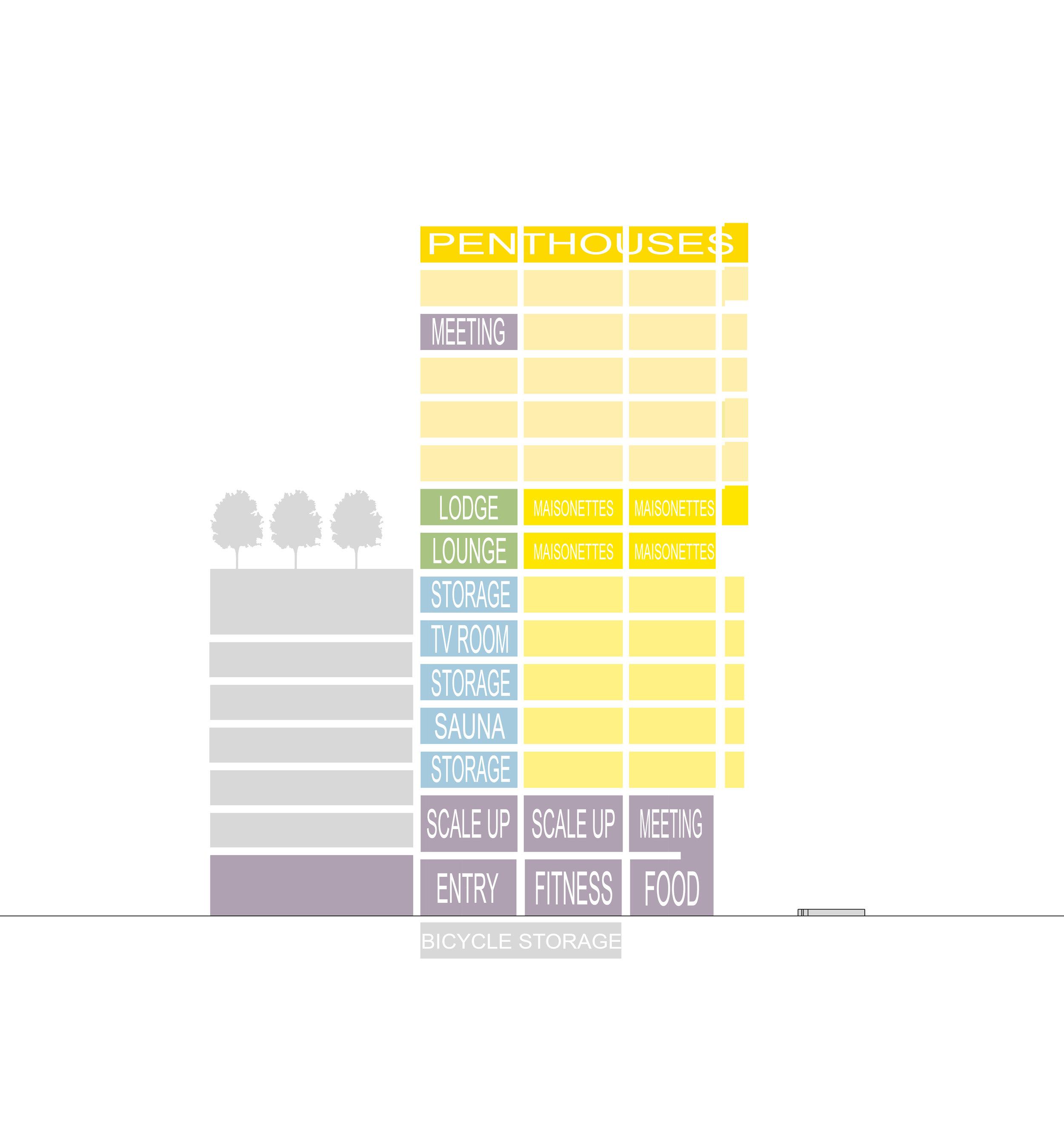 Section Program.jpg