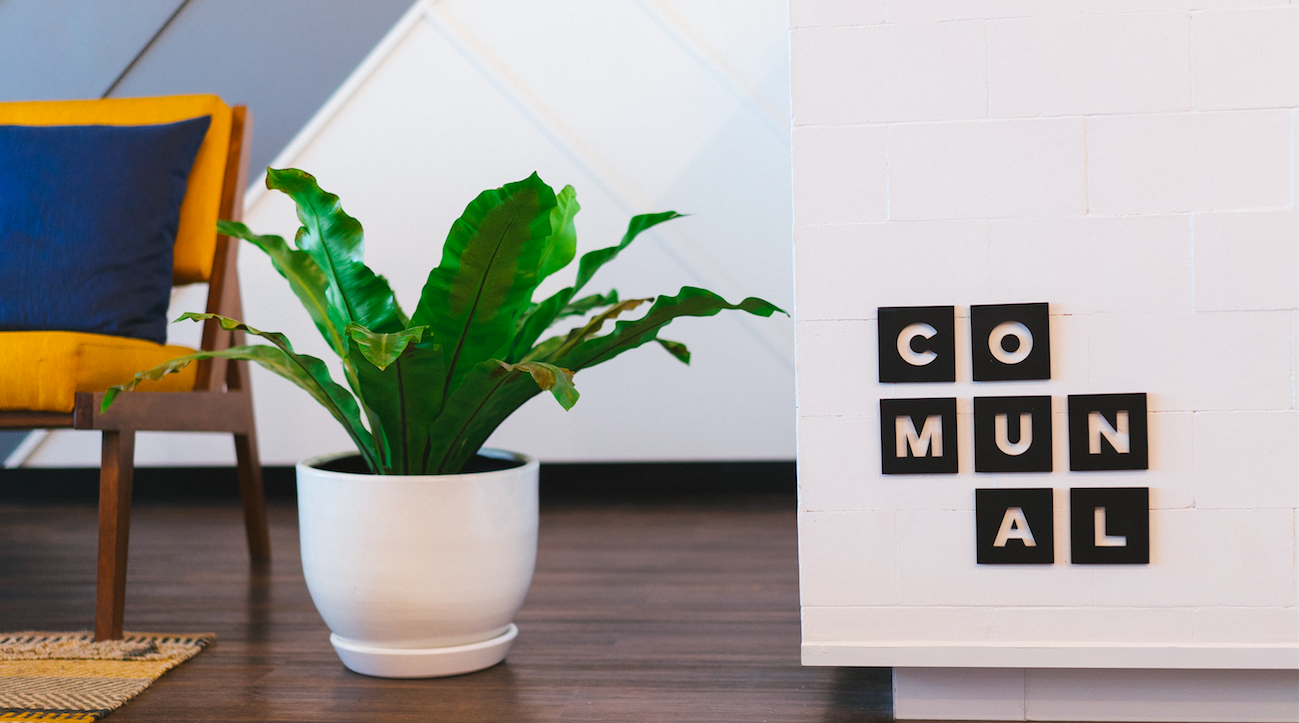 You may be trying to decide if it's time to invest in a co-working space, so I'll lay out some of the pros and cons for you to consider.