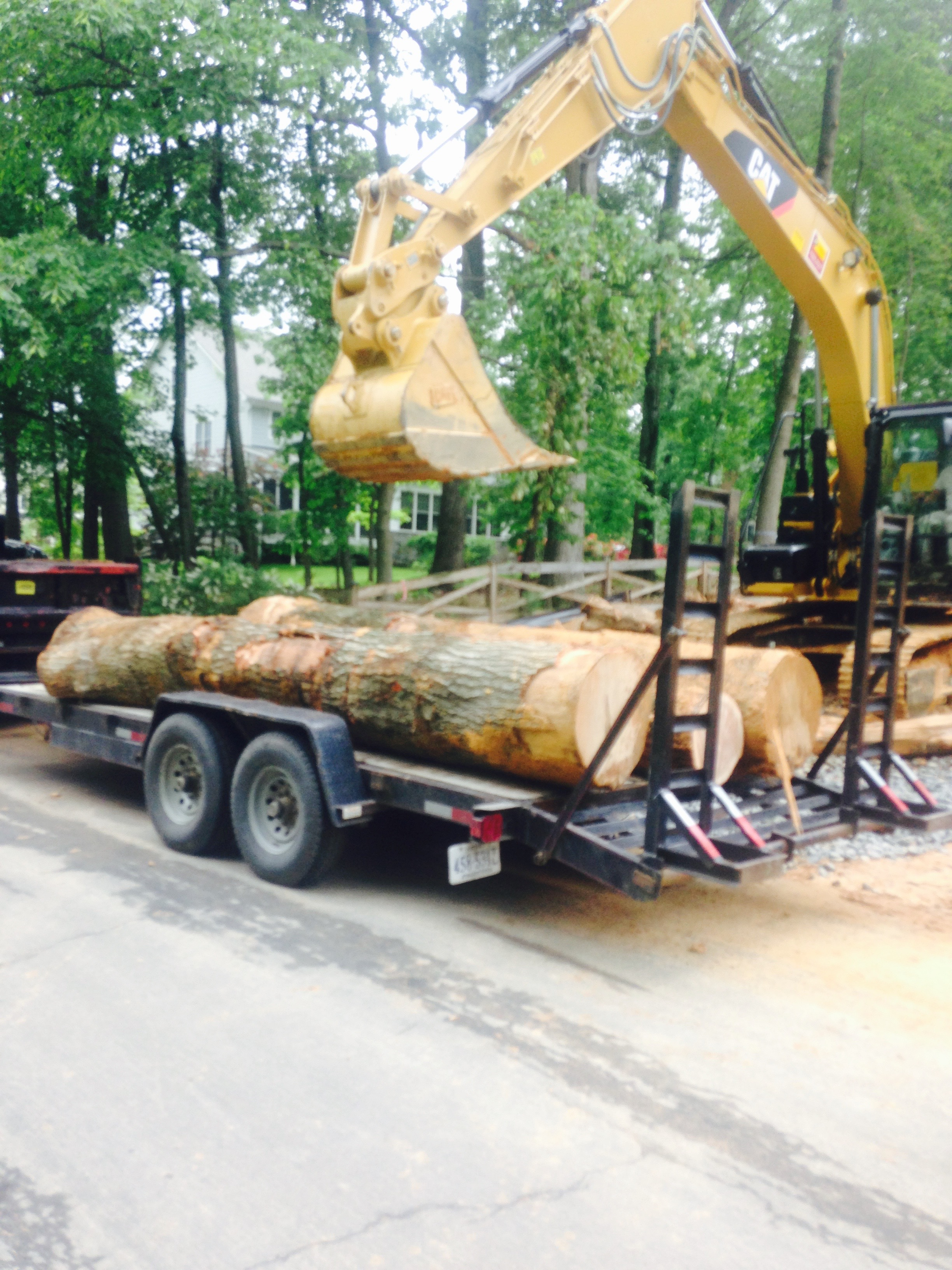 Sending cut trees to make hardwood for the new house