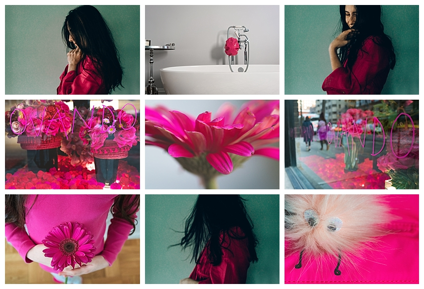 Denise Laurinaitis Grace Project 365 Color Challenge March Hot Pink