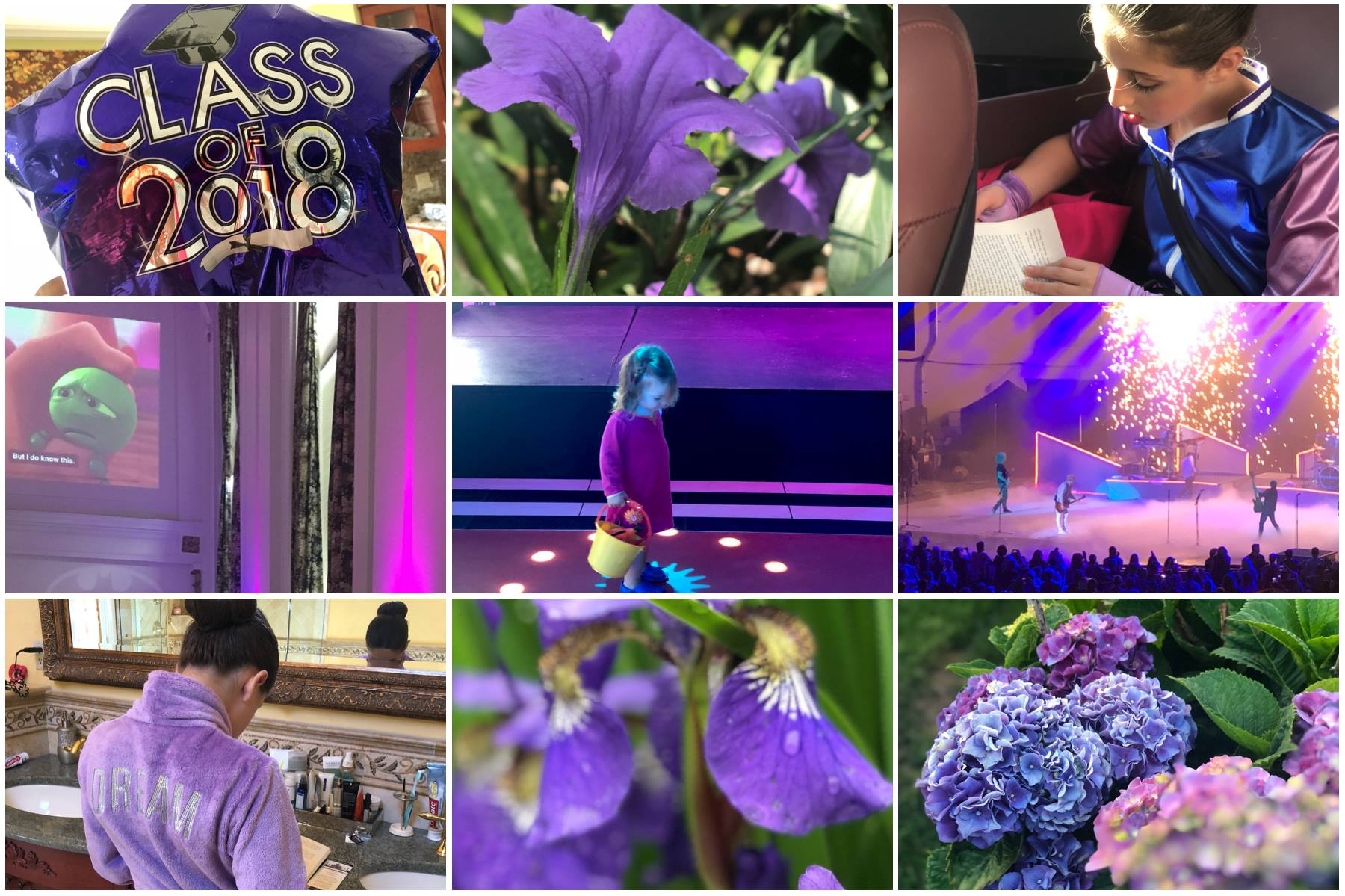 Grace Project Color Project July Purple Juliana Leschinsky