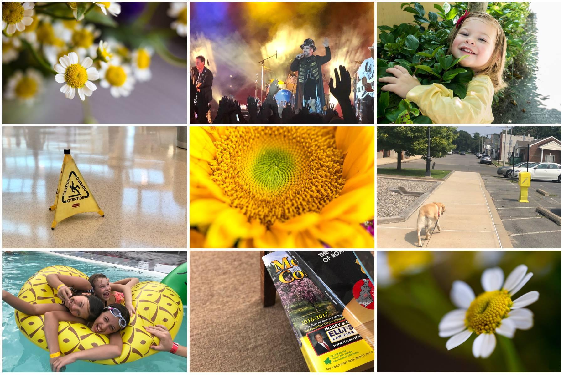 Grace Project 365 Color Challenge August Yellow Juliana Leschinsky