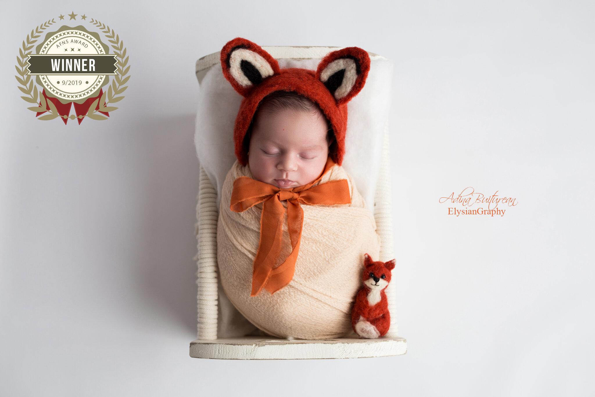 56906441_newborn_fox.jpg