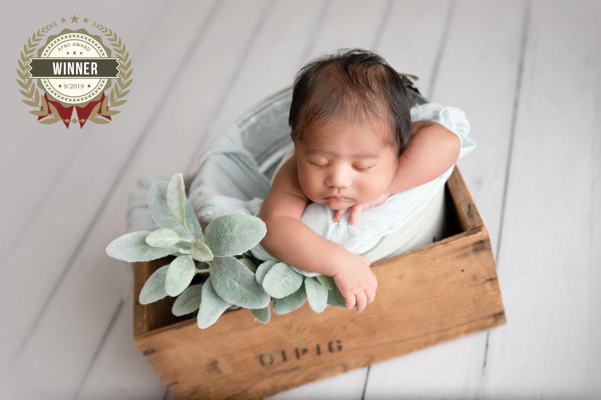 76525706_dhanvin_r_pamulapati_newborn-146-edit.jpg