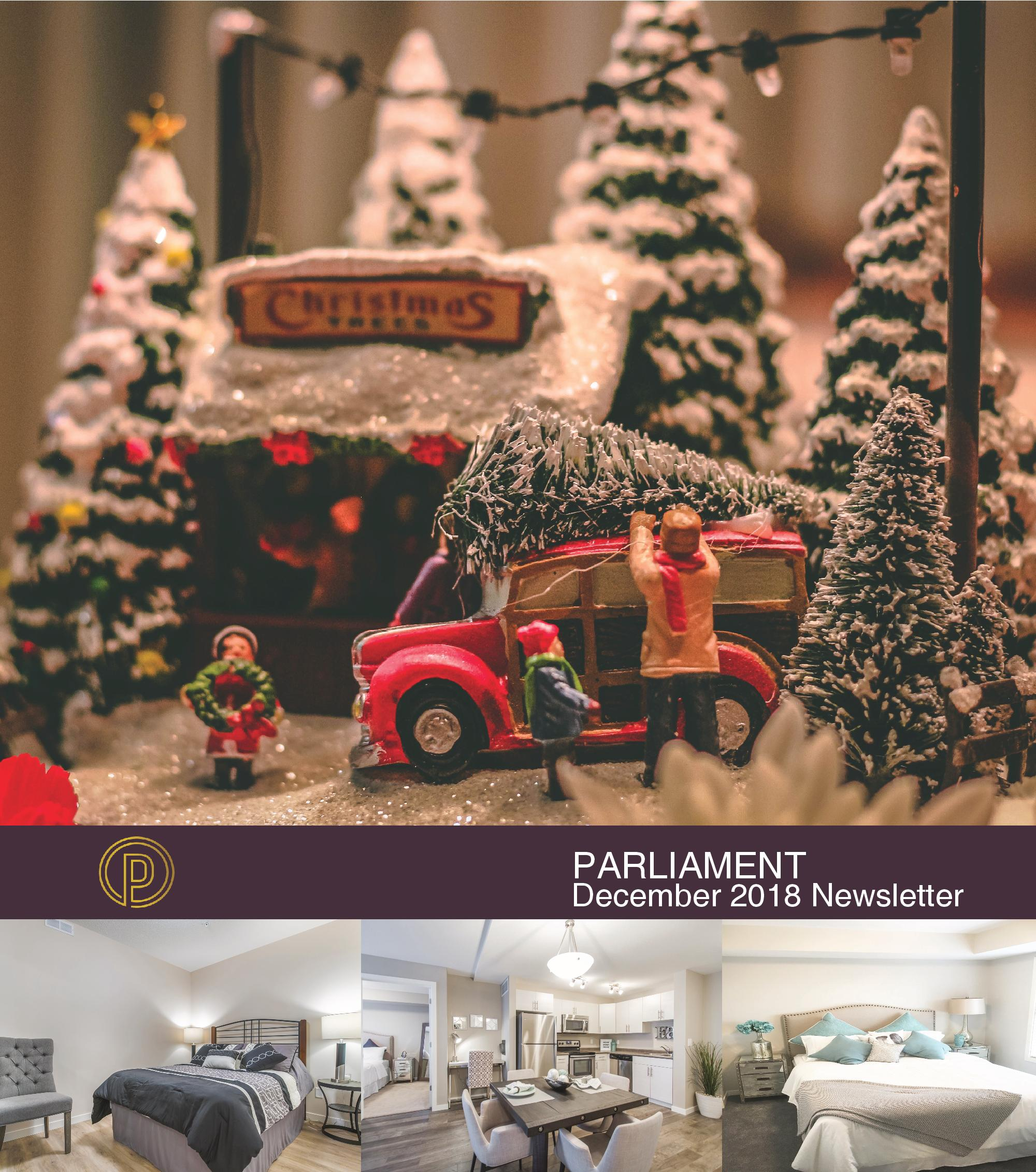 November 20th December Newsletter Parliament-page-001.jpg