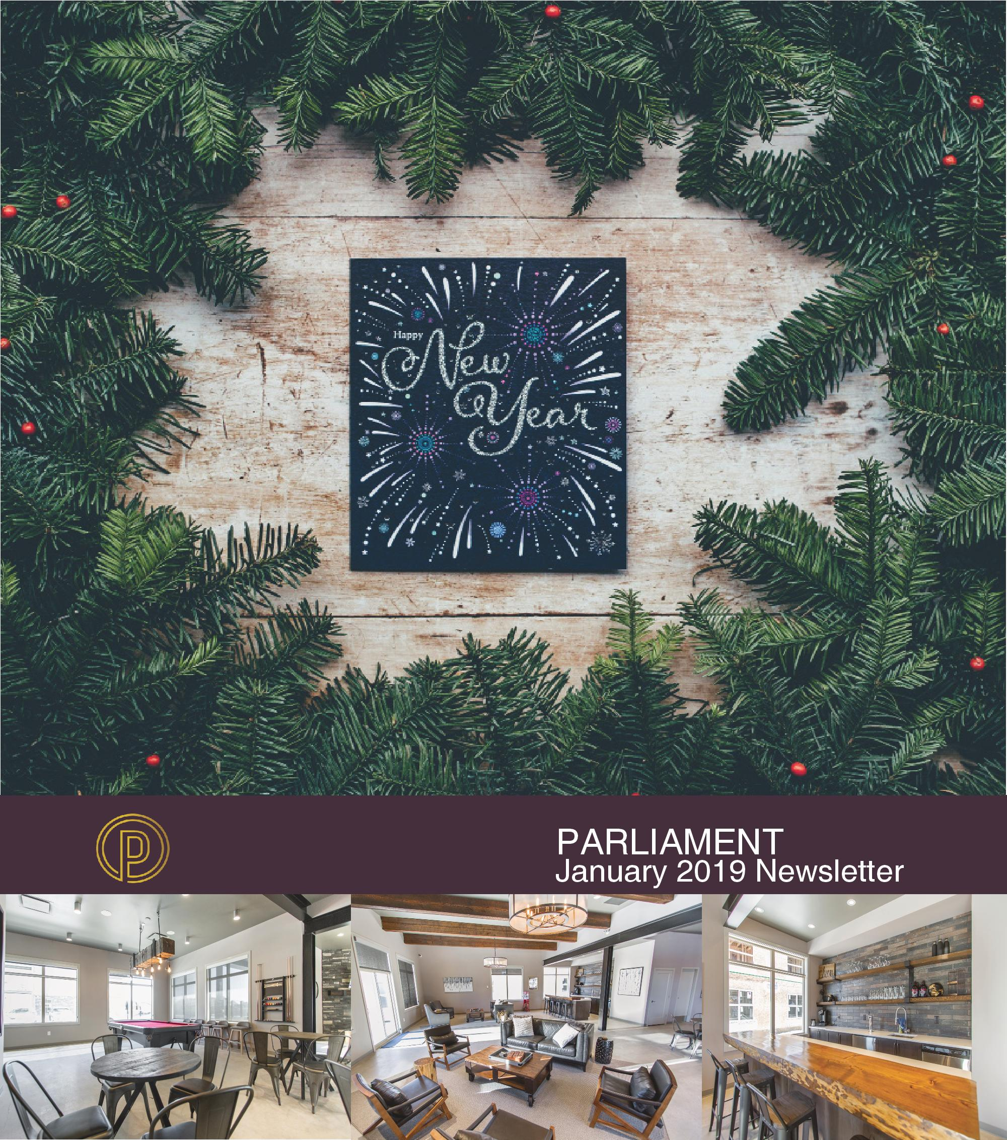 Parliament Newsletter January 2019-1-page-001.jpg