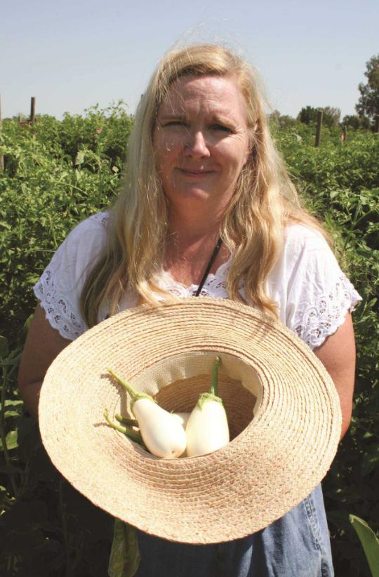 Patty Buskirk / Seeds By Design & Terra Organics