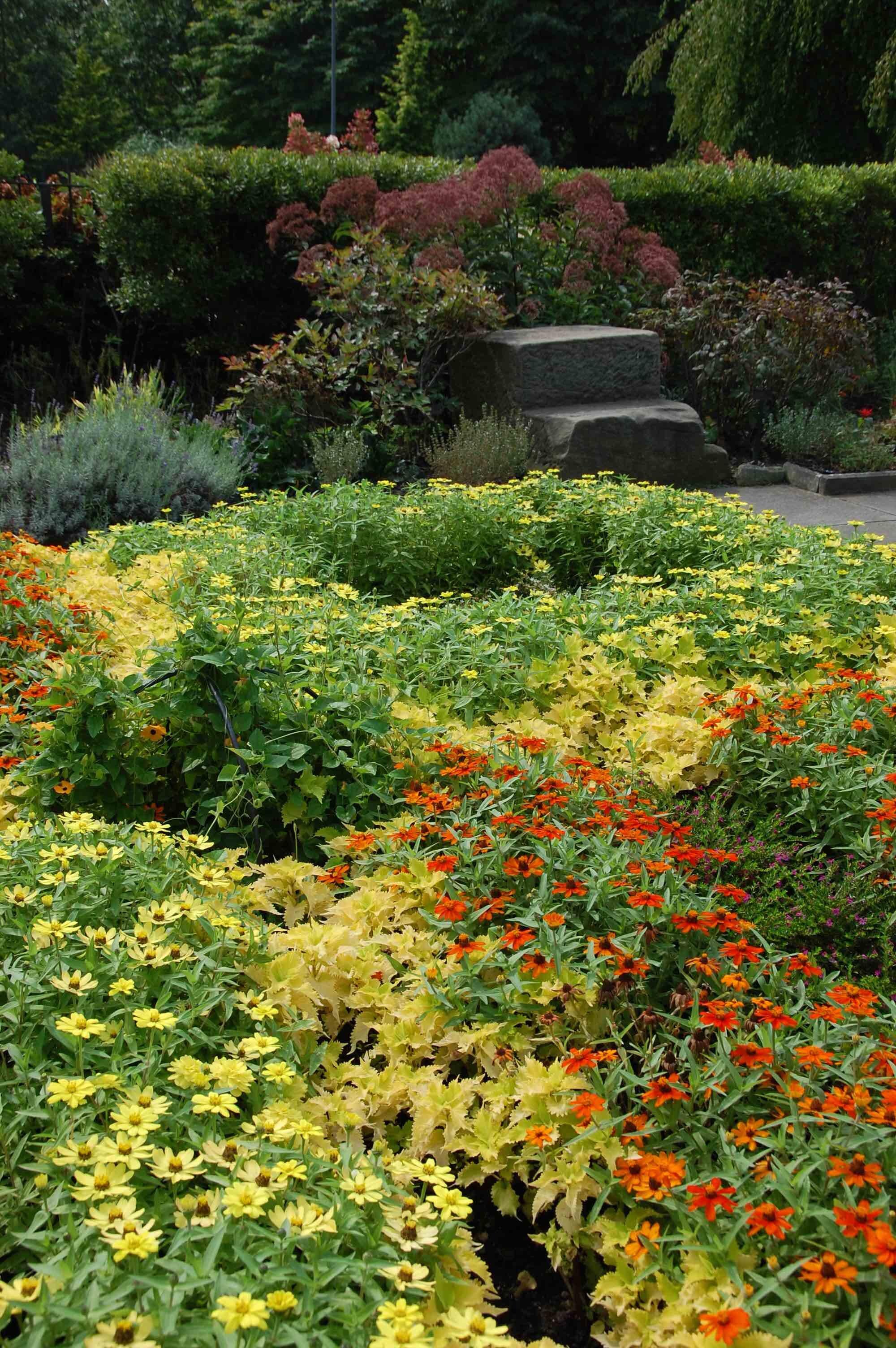 garden scene 2 copy.jpg