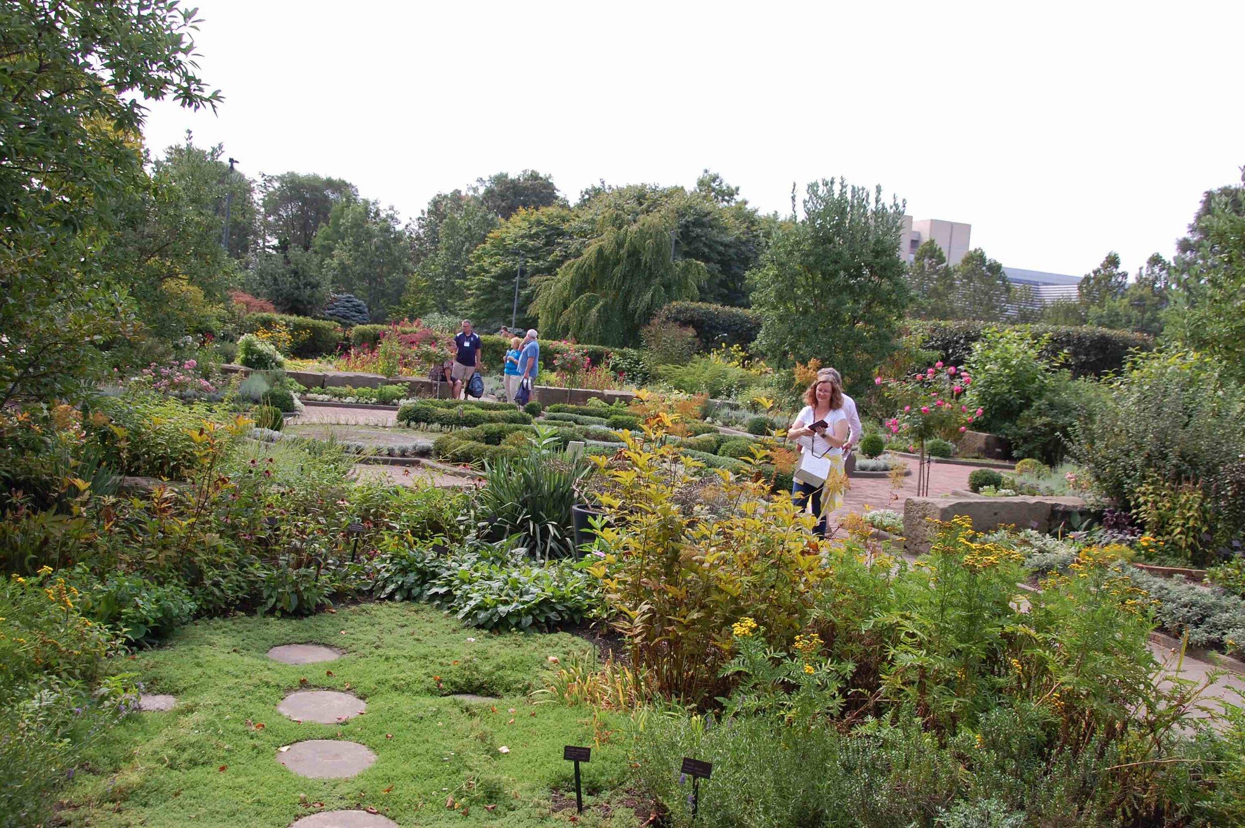 garden scene copy.jpg