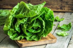 Romaine lettuce is one of the most popular types of lettuce used in the United States.