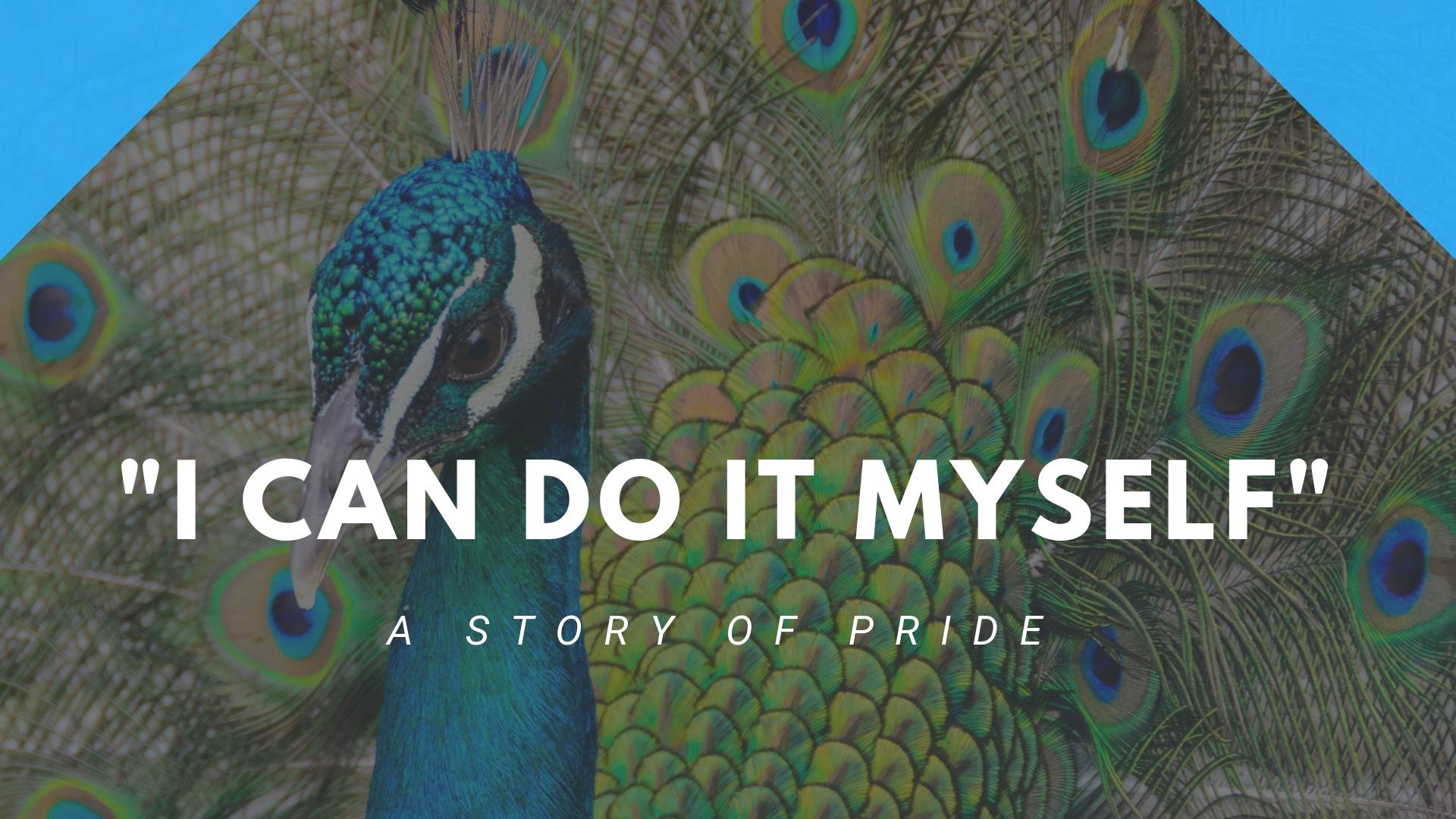pride-I-can-do-it-myself.jpg