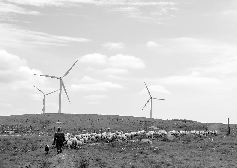hanne elise mwed sauer  og vindmøller-5574.jpg