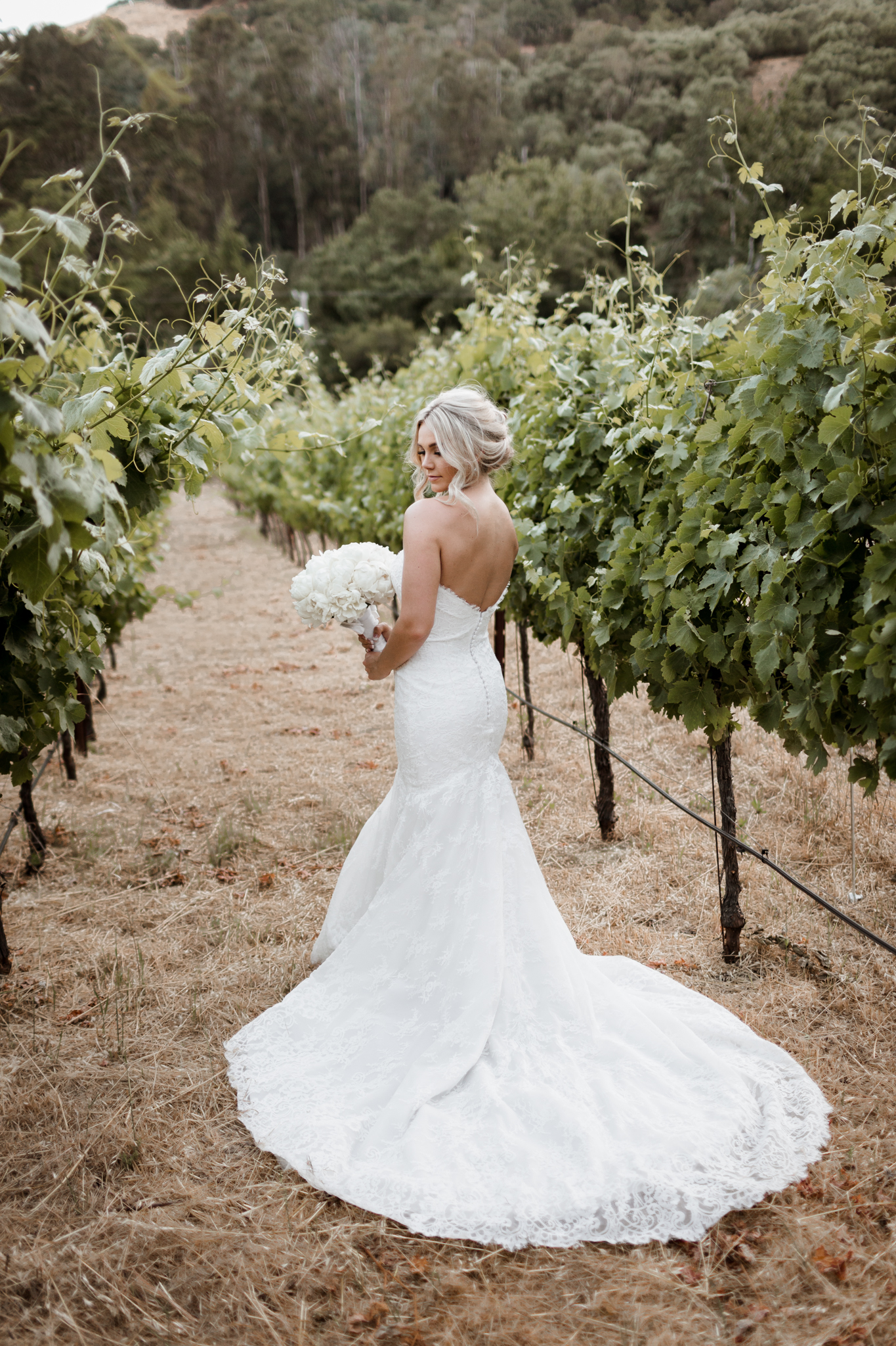 Bridal Portrait Elliston Vineyard Sunol.jpg