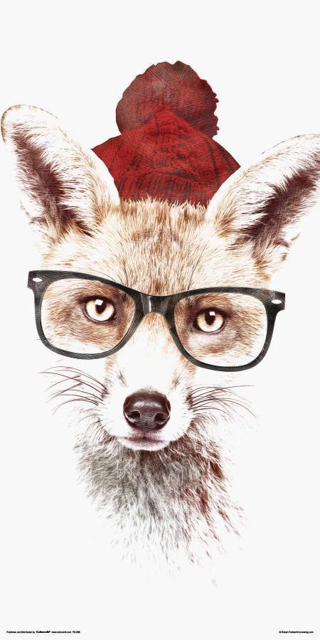 TTL086 ROBERT FARKAS - Hipster Fox-1.jpg