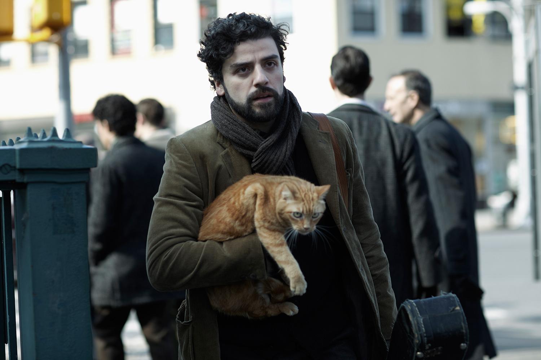 Llewyn-Cat.jpg