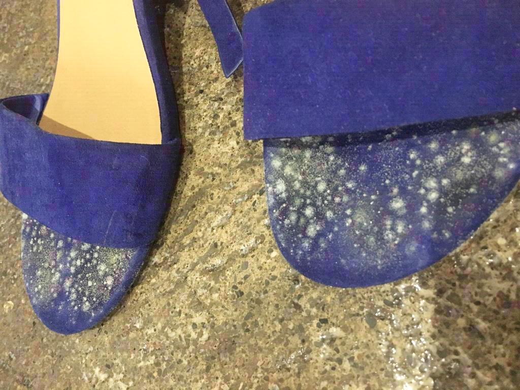 A student found fungus on their shoes. || Photo credit: Lauren Pannell