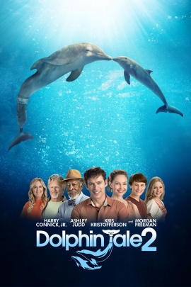 Dolphins Tale 2