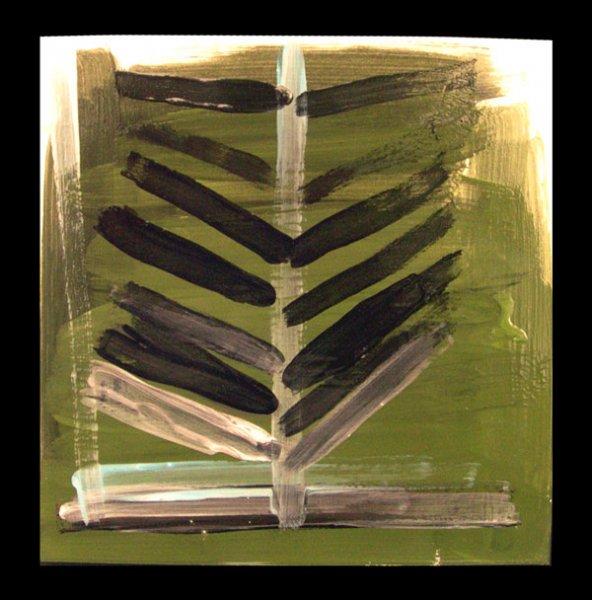 CB-black-pine.jpg
