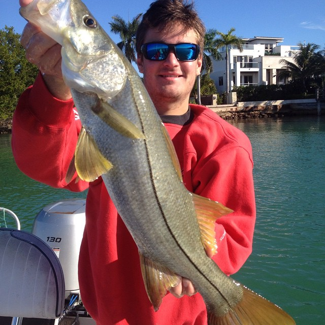 Snook Release in Miami