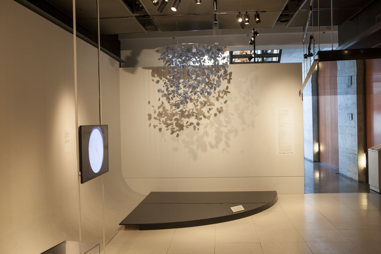 installation view of  birds , 2012 and  cartes mémores , 2014, McCord Museum, Montreal
