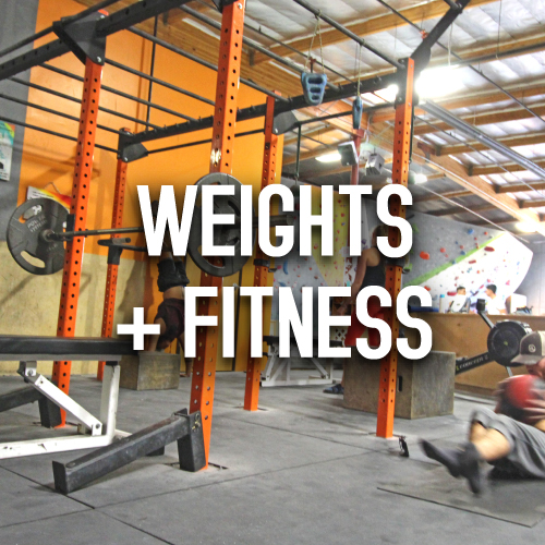 weights fitness
