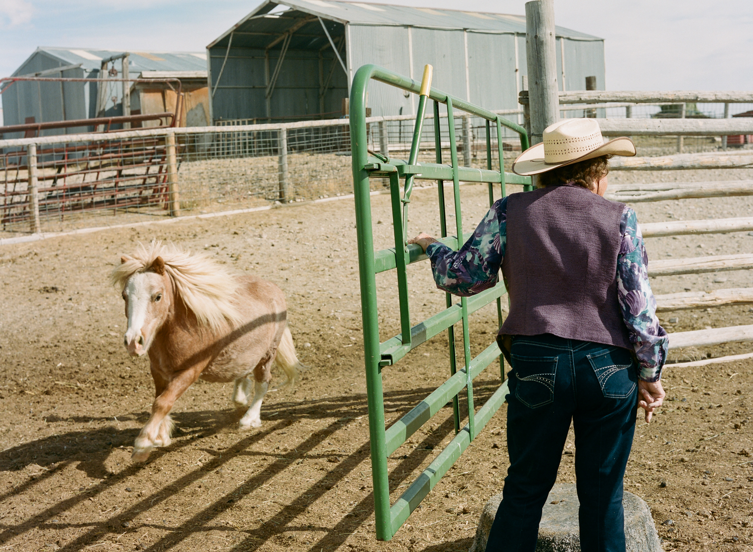 Mickey Thoman working her animals on the Thoman homestead in Sweetwater County, Wyoming.