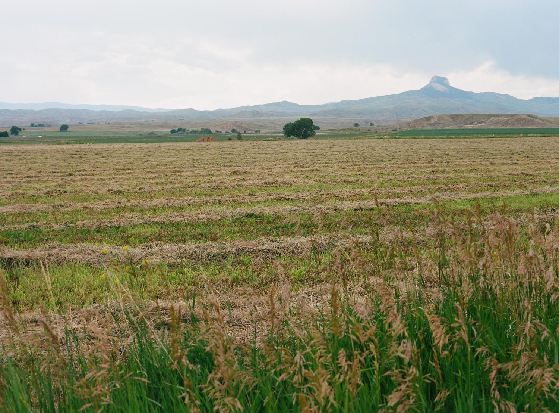 heart_mountain_relocation_center_women_in_wyoming_landscape_farm_field.jpg