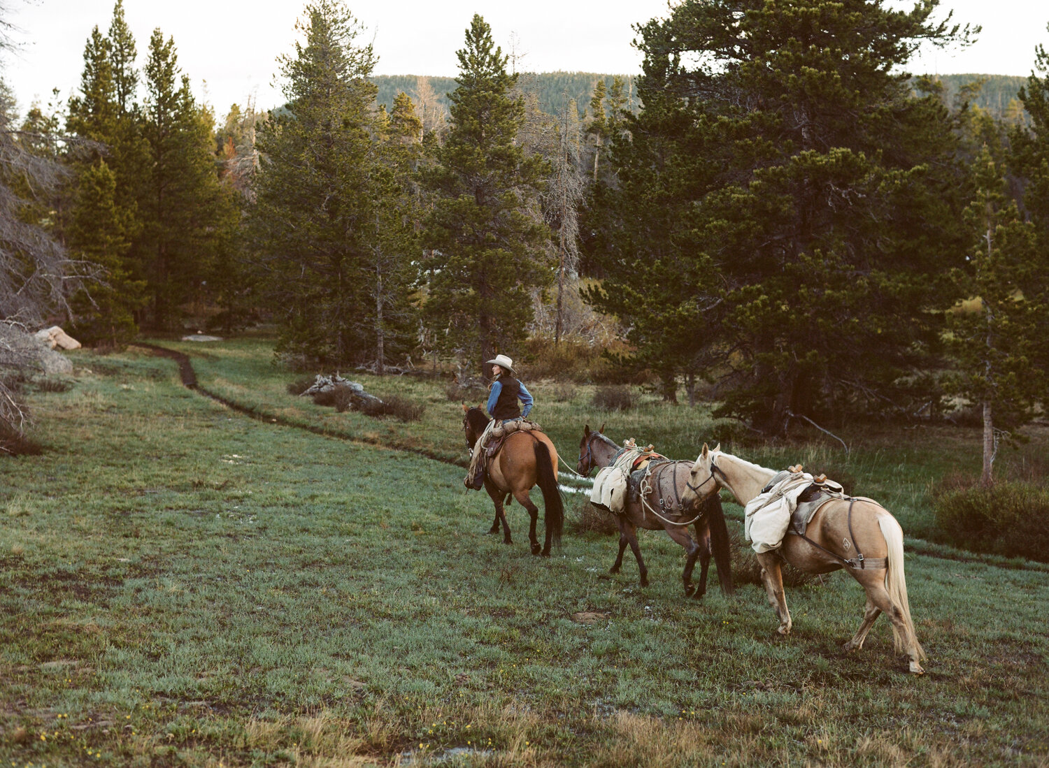 Jessie Allen— Wyoming outdoorswoman, manager of Allen's Diamond 4 Ranch, yogi, hunting guide and NOLS Instructor— packing out for a day in the Wind River Mountains.