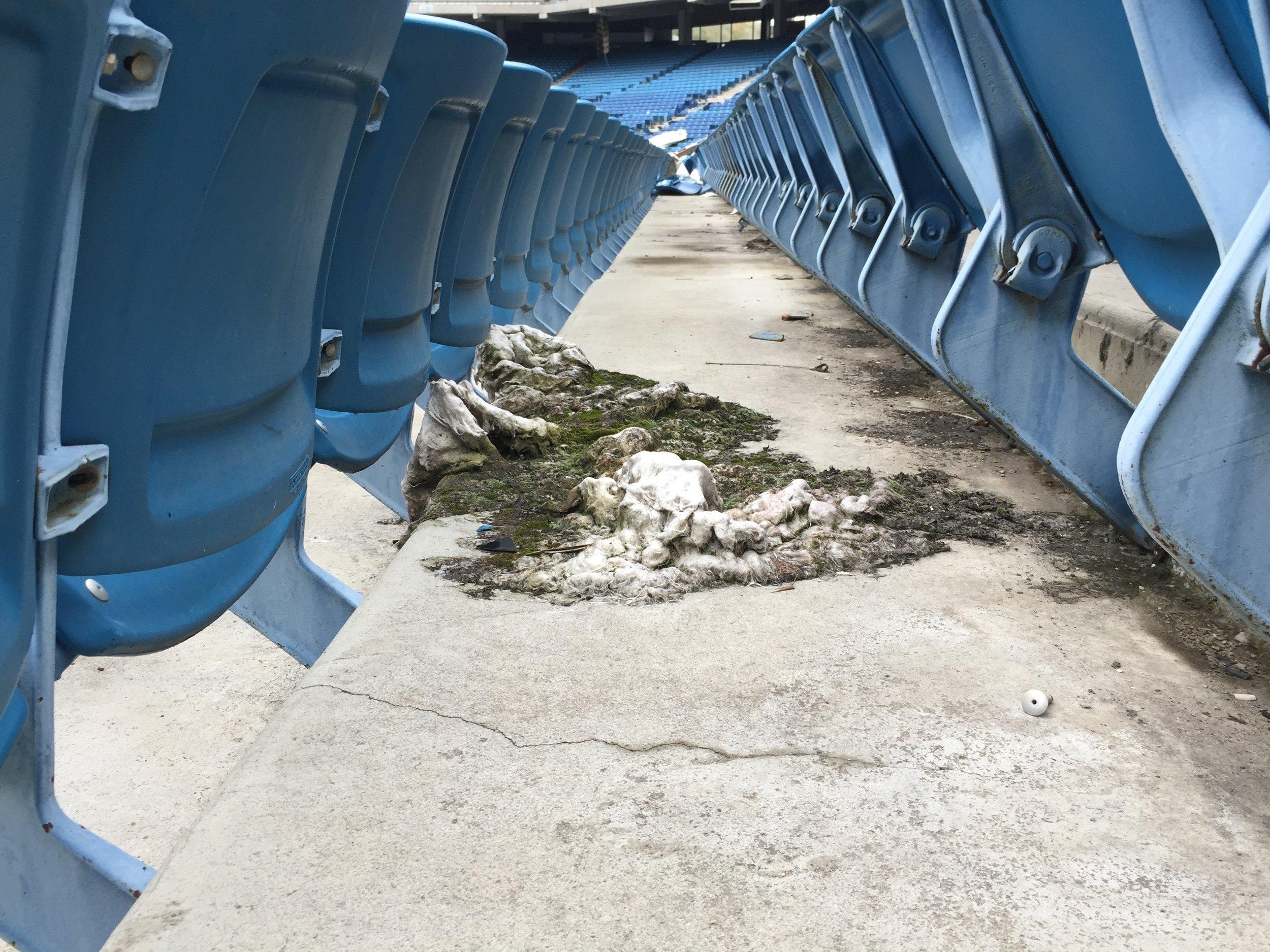 Silverdome (Pontiac, MI)