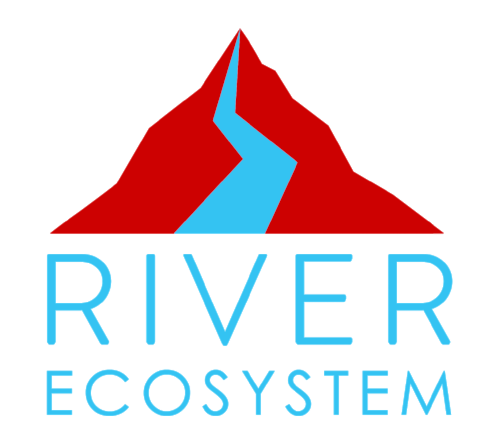 River-Ecosystem (1).png